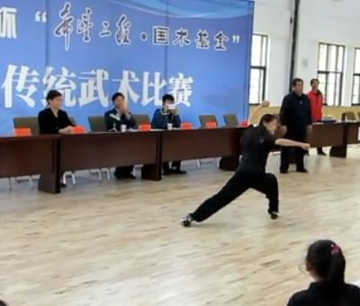 希望工程国术基金首届全国传统武术比赛-示范动作